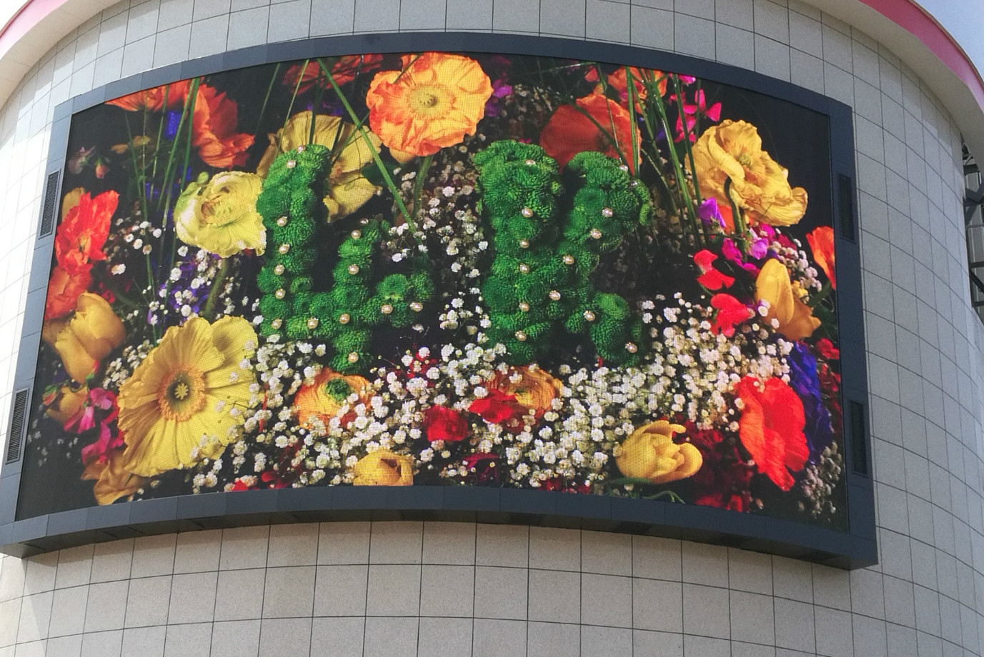 Curved  P8 LED Display Signage
